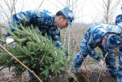 吉林永吉:依托清收还林发展林业产业