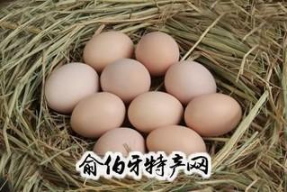 陵川土鸡蛋