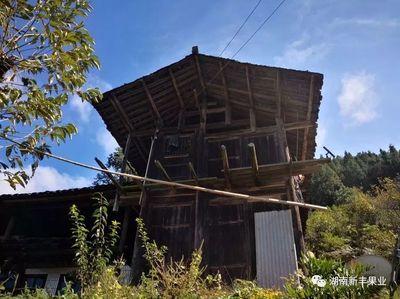 湖南:联点产业指导 培训助推扶贫