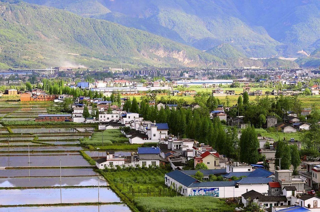 """湖北随州市发展""""两香一油""""优势产业促乡村振兴"""