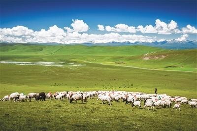 筑起农牧业高质量发展新高地