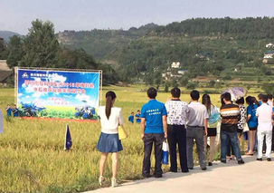 四川广元市农业极速5分排列3局督查全市拖拉机 联合收割机年度检验工作