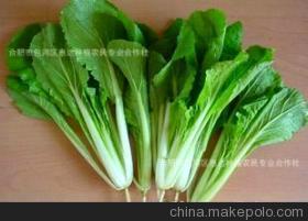 降雨令天津叶菜类价格小涨 近40种蔬菜价格无太大变化