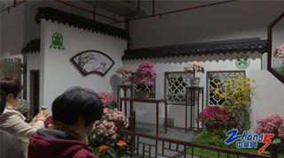 常州办杜鹃花展展示凤凰新城形象