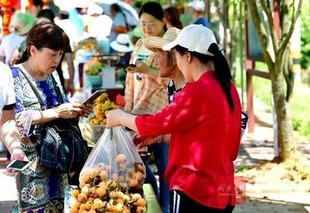 第三届大畈枇杷旅游节暨农特产品推介会开幕