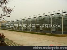 南昌智能玻璃温室大棚一期工程月底竣工