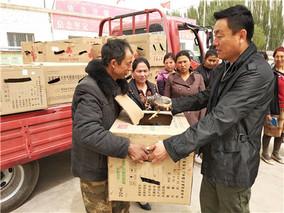 温宿县:精准扶贫送鸡苗 助农脱贫添动力