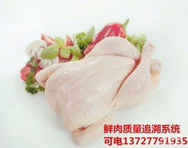猪肉蔬菜有出处流通过程全跟踪