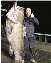 浙江石门:石斑鱼丰收了