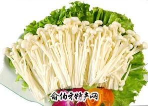 开化金针菇