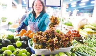 宜昌:小香椿成就大事业