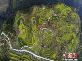 浙江建德美丽乡村创建有新模式