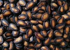 兴安盟黑瓜籽