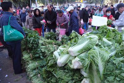 沈阳:合格率100%!沈城上市秋菜质量有保障
