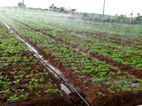 传统施肥模式待革新