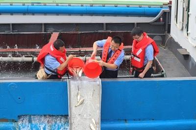 宁波市农业农村局组织开展非法捕捞渔业资源损失赔偿增殖放流活动