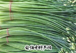 锡林浩特韭菜花