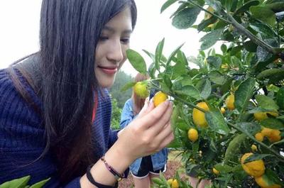 """江西涌现一批网红农民为农产品""""代言"""""""