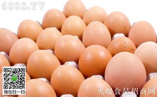 北京鸡蛋价格明显回落