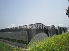 拱棚遮阳网设置要区别于冬暖棚