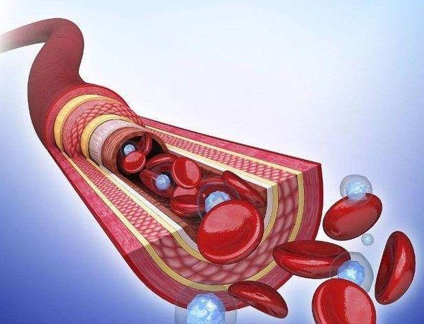 常飲藥粥 軟化血管的功效与作用