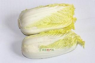白蒲黄芽菜
