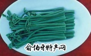 天然野生蕨菜