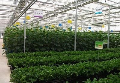 重庆强化农资信用体系建设