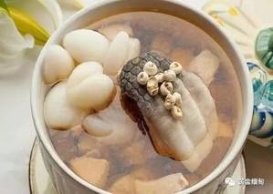 枇杷叶汤的功效与作用