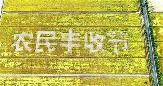 """""""从稻场到卖场""""形成完整产业链"""