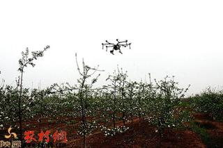 高大上!植保无人机为百亩苹果园喷洒农药
