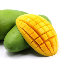 芒果降价了是怎么回事?芒果最新价格行情是怎样?