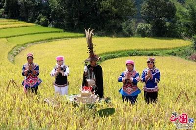 上海丰收节大展示圆满落幕 展现都市现代绿色农业多元魅力与从业者澎湃激情