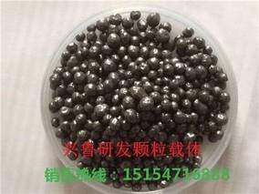 生物农药原料除虫菊的栽培