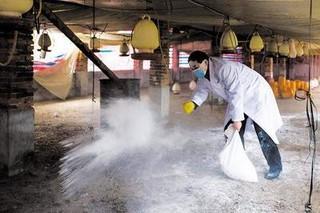 驴养殖场消毒药的使用