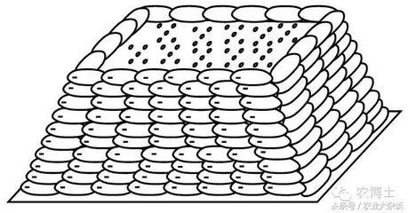 雨季应当如何储存化肥