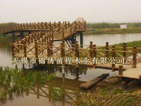 江苏镇江北固湾湿地成鸟类越冬天堂