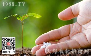 生物菌肥的使用方法