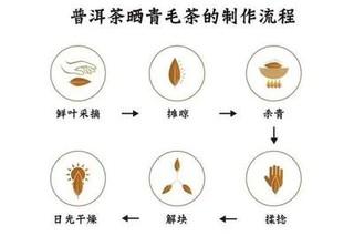 黑茶的工艺流程