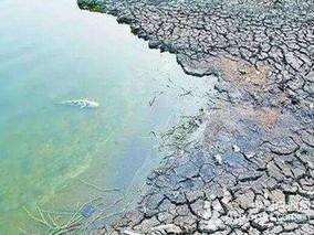 黑龙江首次引入农药降解系统