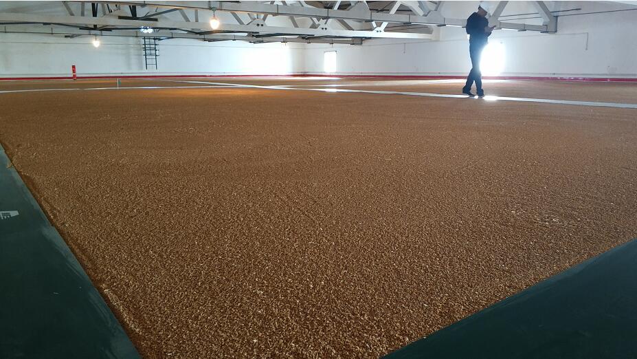 平湖市大力发展科技要粮 小麦产量创近年来新高