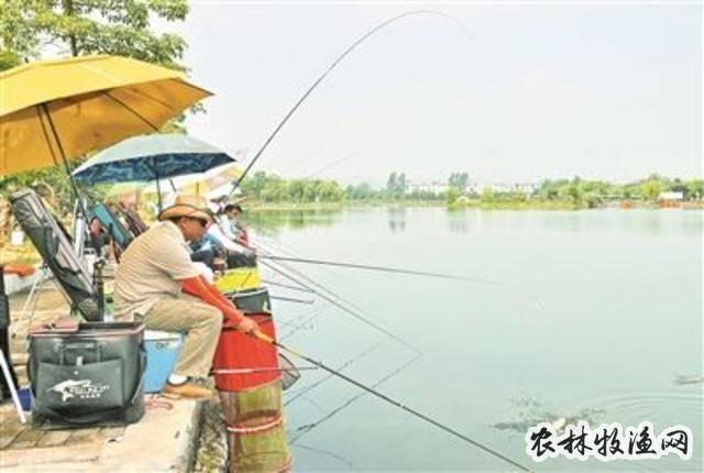 """广西田东启动""""芒果文化月""""活动"""
