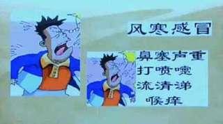 柴胡紫苏饮的功效与作用