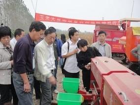 农业极速5分排列3部:稳步推进玉米大豆带状复合种植