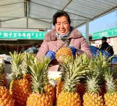 呼和浩特:菠萝皮能吸甲醛?