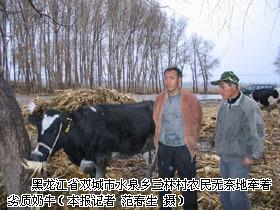 奶牛主要疾病治疗用药调查