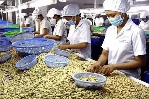 我国农业生产性服务组织已超过115万个
