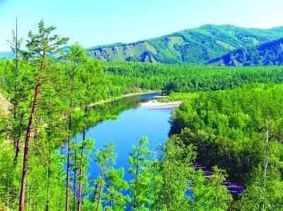 提高优质林产品生产能力