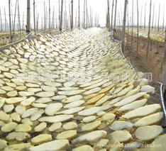 薯干贮藏技术