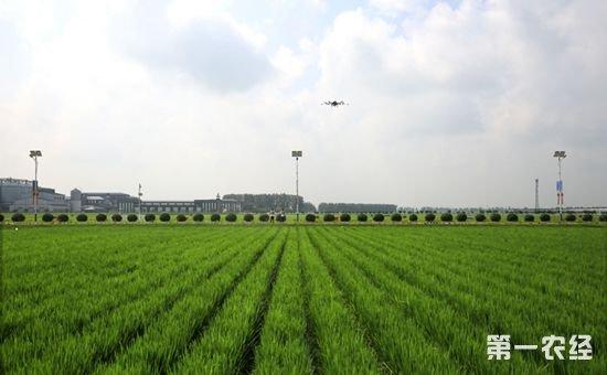 吉林省聚焦三大体系建设推进农业现代化